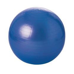 Ballon swissballl éco - 55 cm