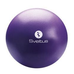 Ballon pédagogique 25 cm - Violet